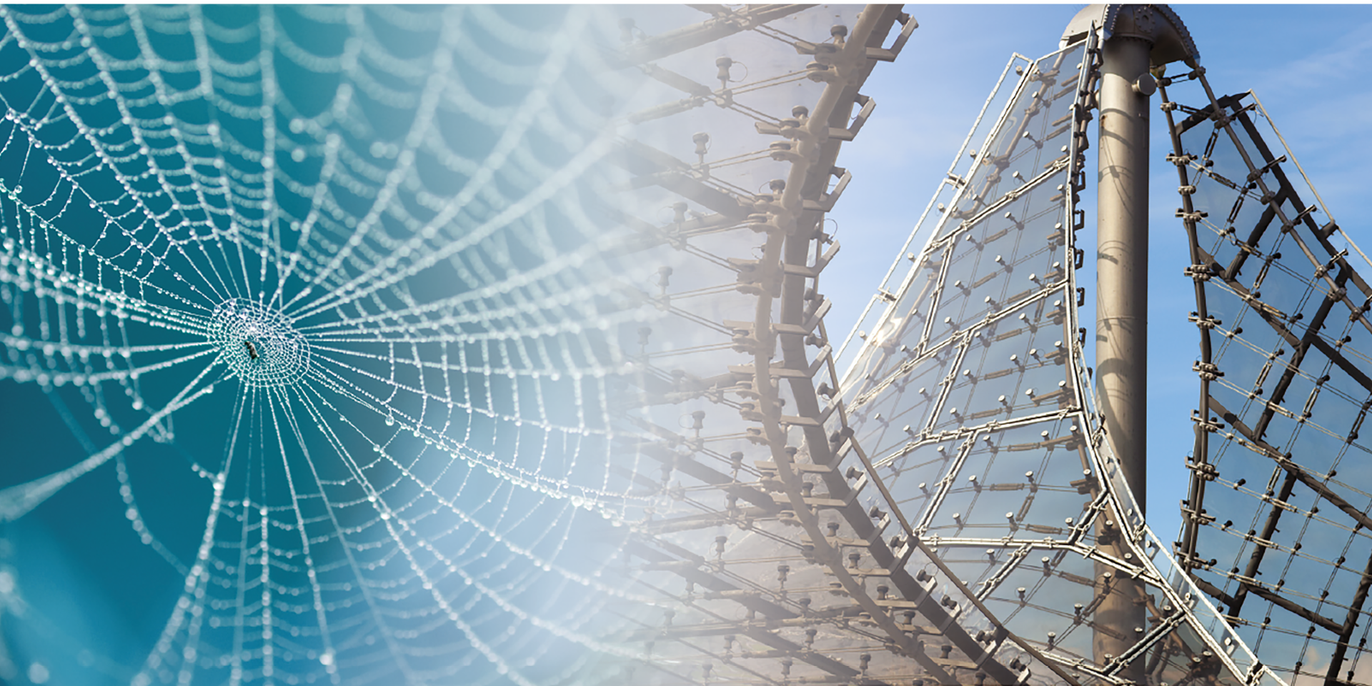 Olympiastadion und Spinnennetz werden gegenüber gestellt